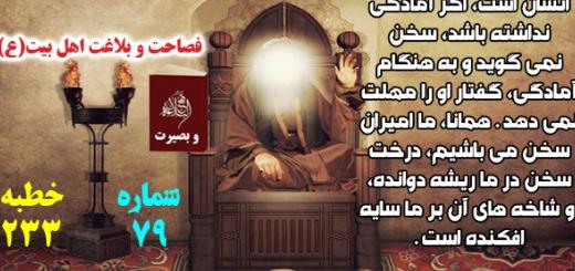 فصاحت و بلاغت اهل بیت(ع) / مجموعه نهجالبلاغه وبصیرت / شماره79