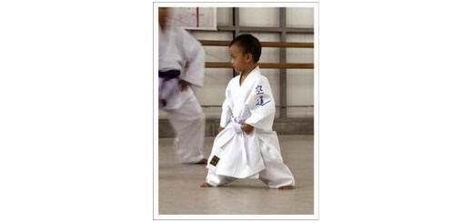 فلسفه رنگ کمربند ها در کاراته