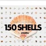 دانلود 150 تصویر با کیفیت سخت پوستان دریایی، صدف، حلزون، ستاره دریایی و ...