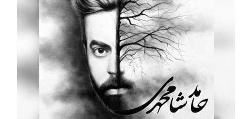 دانلود آلبوم جدید و فوق العاده زیبای آهنگ تکی از حامد شامحمدی