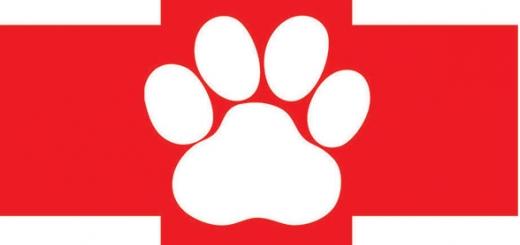 «اورژانس حیوانات» هم راهاندازی میشود