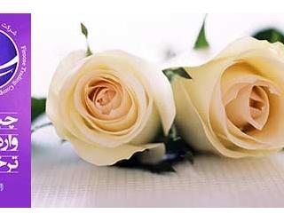واردات گل مصنوعی , ترخیص گل و میوه مصنوعی