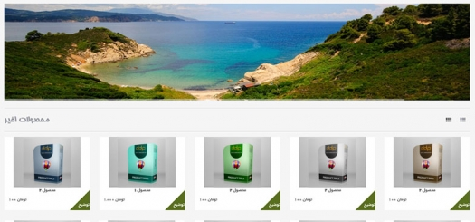 راه اندازی سایت فروشگاه آنلاین با اسکریپت تجاری Digital Download Pro