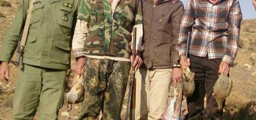 جریمه و دادگاه برای عامل شکار کبک و خرگوش