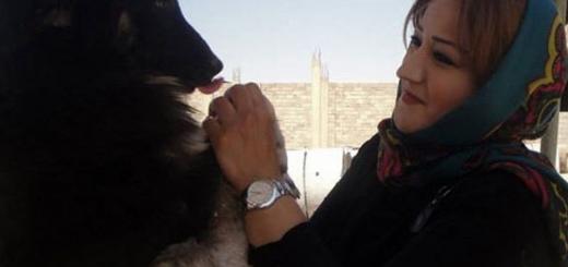 ژیلا؛ زنی که سگ کشی در تبریز را متوقف کرد