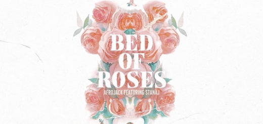 متن و دانلود آهنگ bed of roses از afrojack