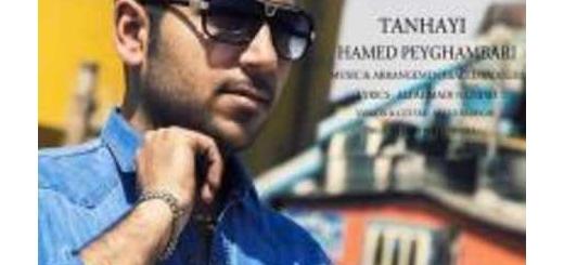 دانلود آلبوم جدید و فوق العاده زیبای آهنگ تکی از حامد پیغمبری