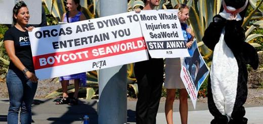 اعتراض فعالان محیط زیست به استیون اسپیلبرگ