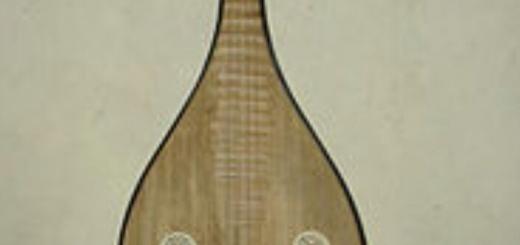 پیپا معروف به گیتار چینی میباشد دارای سابقه ای به بیش از دو هزار سال می باشد. برخی اوقات آنرا لوت چینی نیز نام میبرند که بسیاری از سازهای آسیا بالاخص سازهای جنوب آسیا از این ساز بوجود آمده است و شاید بتوان آنرا مادر سازهای زهی جنوب آسیا دانست. از جمله biwa