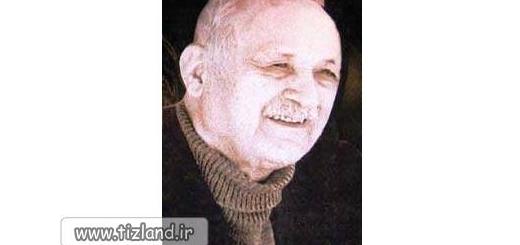 زندگینامه دکتر عبدالحسین زرین کوب
