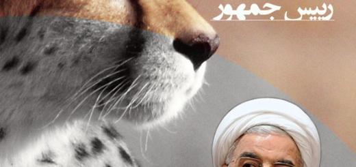 پاسخ دو وزارتخانه به طومار نجات یوزپلنگ ایرانی