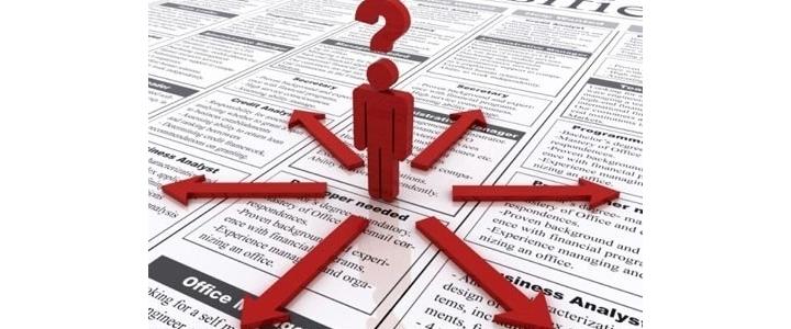 آنالیز شغل حسابرسی، ممیز مالیاتی