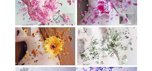 دانلود اکشن فتوشاپ ایجاد افکت پراکندگی پروانه بر روی تصاویر