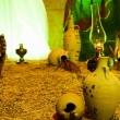 مجموعه عکس های شور حسینی،شعور حسینی (محرم 1396 مشهد) (سری اول)