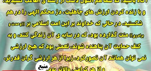 علل نکوهش وسقوط کوفیان1/مجموعه نهج البلاغه وبصیرت/شماره 96