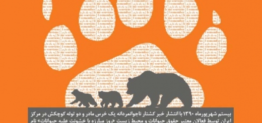 روز مبارزه با خشونت علیه حیوانات