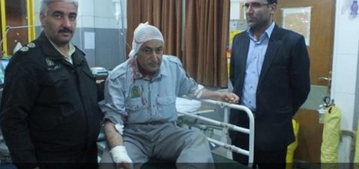 جنگلبان بویراحمد در درگیری با قاچاقچیان چوب به شدت مجروح شد