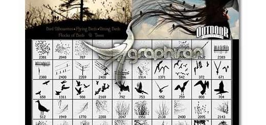 دانلود ۱۴۰ براش فتوشاپ پرندگان