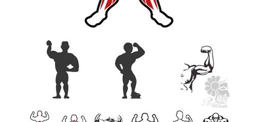 دانلود تصاویر وکتور آیکون بدنسازی، عضلات مرد بدنساز