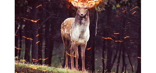 دانلود اکشن فتوشاپ ایجاد افکت شعله آتش بر روی تصاویر