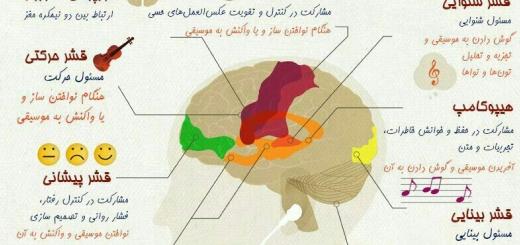 #موسیقی کدام بخش های  #مغز را تقویت می کند؟  #رابطه_موسیقی_و_مغز